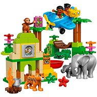 LEGO DUPLO 10804 Jungle - Building Kit