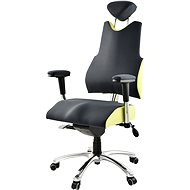 Therapia Professional PRO500 - anthracite/light green, XL - Office Chair