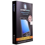 ScreenShield for the Blackberry Bold 9900 on the entire body of the phone - Screen protector