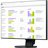 "24"" EIZO FlexScan EV2451-BK - LED Monitor"